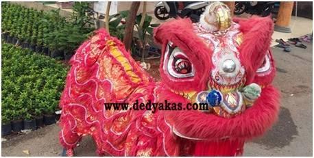 Dedy Akas Website - Penampakan Barongsai Singa