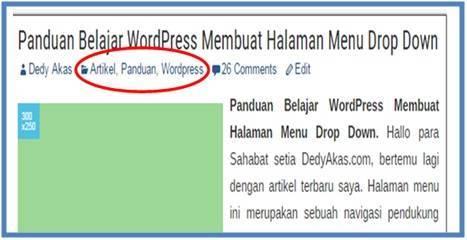Panduan Belajar WordPress Membuat Kategori dan Tag atau Label - Dedy Akas Website