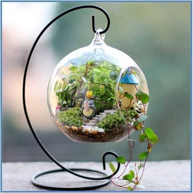 Contoh Terarium Taman Mini di Dalam Toples Kaca
