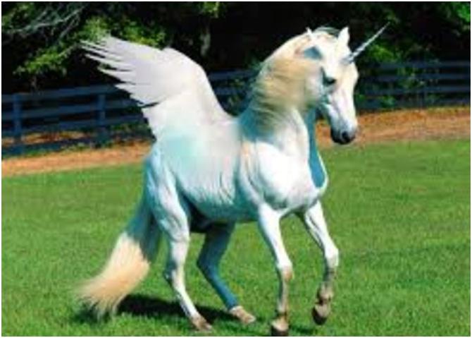 Unicorn Kuda Bercula dan Bersayap